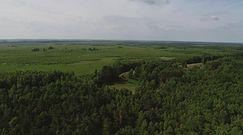 Biebrzański Park Narodowy: unikatowy teren na skalę europejską