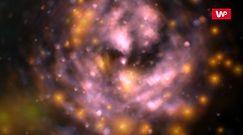Naukowcy przecierali oczy ze zdumienia. Pomylił ją z gwiazdą