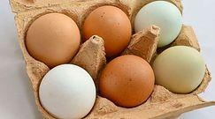 Jaja od kur z wolnego wybiegu mogą zawierać rakotwórcze dioksyny