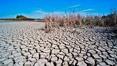 Najcieplejszy rok w historii. Będzie tylko gorzej