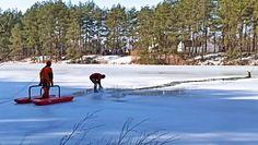 Jeleń w stawie na lodzie. Strażacy natychmiast ruszyli na pomoc
