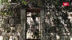 Wielkie odkrycie w dżungli na Jukatanie