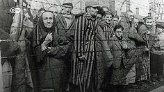 """Wnuki nazistów o dziadkach. """"Moja babcia była zagorzałą nazistką"""""""