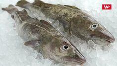 Ryby w diecie. Sprawdź, jak wybierać najlepsze dla zdrowia i planety