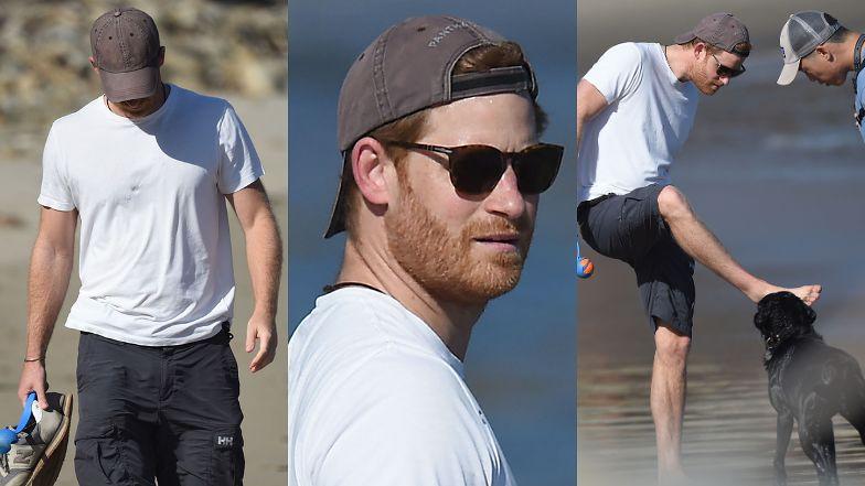 Zrelaksowany książę Harry i jego wierny towarzysz dokazują na plaży bez Meghan u boku (ZDJĘCIA)