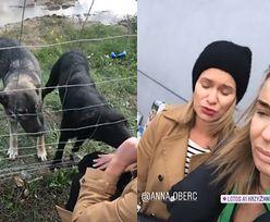 """Agnieszka Włodarczyk znalazła porzucone przy drodze psy: """"BŁAGAM, POMÓŻCIE. Jak można być takim sku*wysynem?"""""""