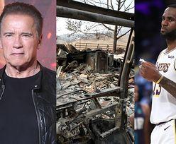 Pożary w Kalifornii. Ewakuowano LeBrona Jamesa i Arnolda Schwarzeneggera