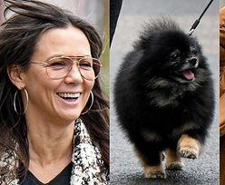 Naturalna Kinga Rusin i przystojny Czarek Lis świętują 23. urodziny Poli na rodzinnym spacerze (ZDJĘCIA)