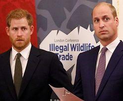 """Książę William i Harry ROZMAWIALI PRZEZ 2 GODZINY po pogrzebie dziadka: """"Tego życzyłby sobie Filip"""""""