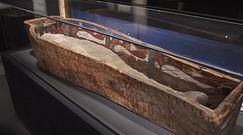Tajemnicza mumia w błotnym kokonie. Zadziwiające, co odkryli naukowcy