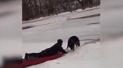 Załamał się pod nim lód. Nagranie z akcji ratowniczej z Makowa Mazowieckiego