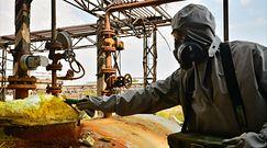 """""""Rosyjski Czarnobyl"""". Putin podjął decyzję ws. milionów toksycznych odpadów"""