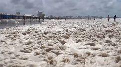 Ocean wyrzucił to na brzeg plaży. Turyści nie kryli zaskoczenia