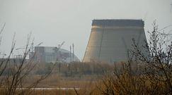 Mieszka w skażonej strefie Czarnobyla. Niezwykła historia 85-latka