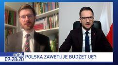 Co jeśli polski rząd zawetuje unijny budżet? Wiceminister tłumaczy