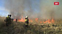 """Dramatyczna walka strażaków. Próbują ratować, co się da. """"Jest bardzo trudno"""""""
