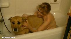 Niecodzienna kąpiel
