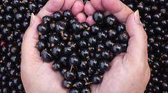 Ranking najzdrowszych owoców