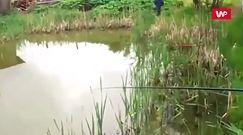 Wędkarz zaniemówił, kiedy zobaczył, co stało się ze złapaną rybą