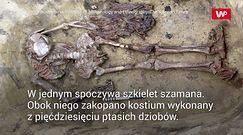 """Odkryli groby sprzed 5 tys. lat. Znaleźli """"kołnierz"""" z ptasich dziobów"""
