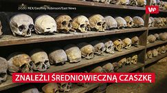 Odkryto starożytną czaszkę. Skrywa makabryczną tajemnicę