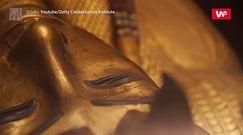 Analiza DNA czarnych kropek na ścianie grobowca Tutanchamona