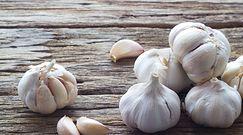 Wartości zdrowotne kiełkującego czosnku
