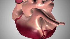 Ablacja - badania serca przed zabiegiem