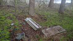Nietypowa ekshumacja leśnej mogiły w pobliżu Drawska
