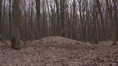 Średniowieczne cmentarzysko obok Lublina. Mało kto o nim słyszał