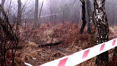Katastrofa helikoptera pod Pszczyną. Policjanci o tragicznym wypadku