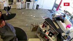 Wpadł do fryzjera. Klienci poderwali się na równe nogi