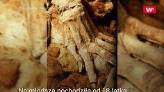 Przebadali mumie. Wyniki badań zaskoczyły ekspertów