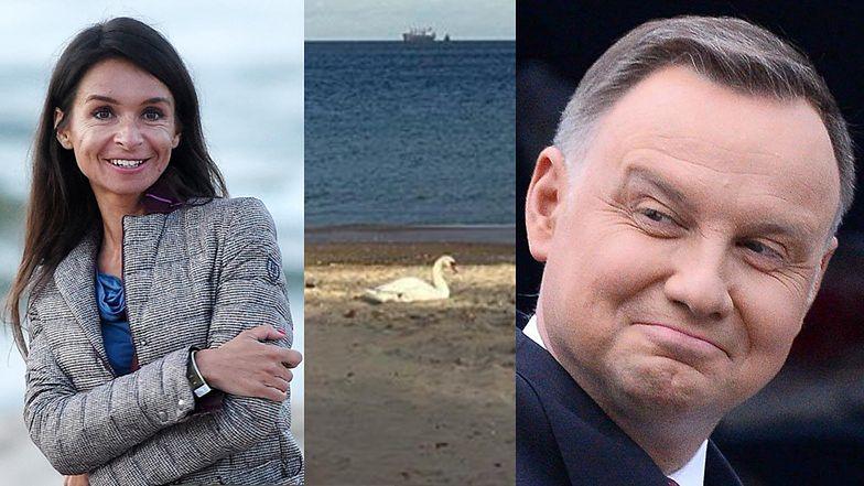 """Ozdrowieniec Andrzej Duda """"polajkował"""" na Instagramie zdjęcie Marty Kaczyńskiej z ŁABĄDKIEM na piasku..."""