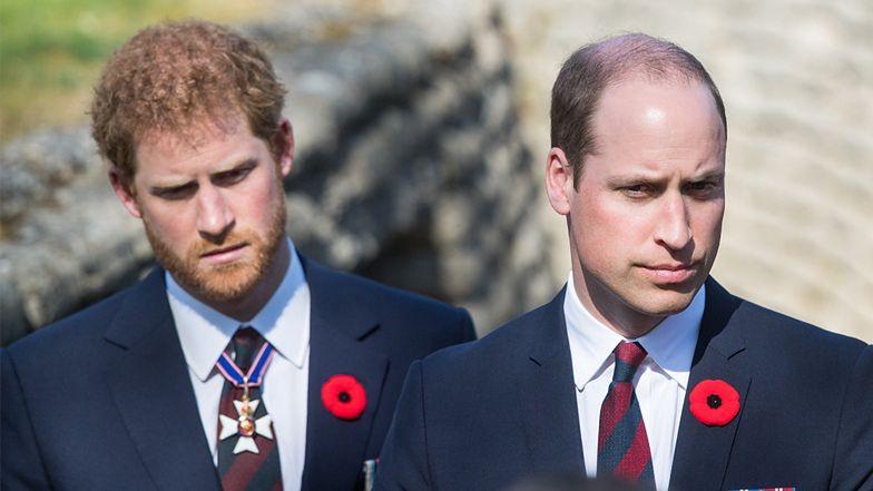 """Książę William jest ZSZOKOWANY zachowaniem Harry'ego, który """"odpyskował"""" królowej: """"OBRAZIŁ I ZLEKCEWAŻYŁ BABCIĘ"""""""