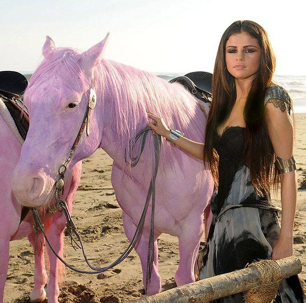 """PETA do Gomez: """"Żywe konie to nie zabawki rozpieszczonych dziewczynek!"""""""
