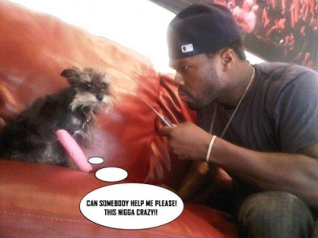 50 Cent grozi psu nożem! (ZDJĘCIA)