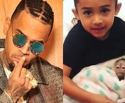 Chris Brown może trafić do więzienia! Za nielegalne posiadanie... małpy kapucynki (FOTO)