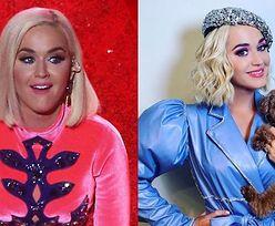 """Pies Katy Perry przeszedł na WEGANIZM? """"Towarzyszy mi w tej podróży"""""""