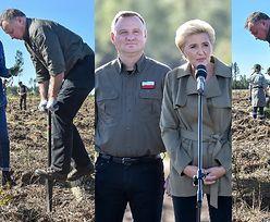 Dzierżący szpadel w dłoniach Andrzej Duda z zakasanymi rękawami sadzi drzewa z małżonką Agatą (ZDJĘCIA)