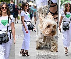 Kinga Rusin wyprowadza na spacer Czarka Lisa i jego kolegę. Zostanie nową psią gwiazdą? (ZDJĘCIA)