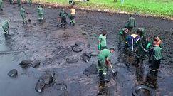 Katastrofa ekologiczna na Mauritiusie. Masowiec osiadł na mieliźnie