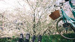 Wiosna w pogodzie w końcu nadejdzie. Ekspert z IMGW wyznaczył dokładną datę