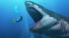 Megalodon – największy wodny drapieżnik
