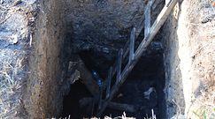 Leśnicy odkryli biedaszyby w okolicy Wałbrzycha
