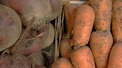 Jak właściwie przechowywać warzywa?