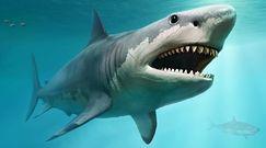 Tajemnica z prehistorii odkryta. Wszystko dzięki zębom