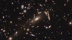 Halo z ciemnej materii. Astrofizycy publikują sensacyjną teorię