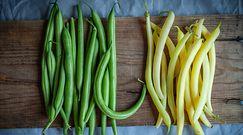 Fasolka szparagowa. Kopalnia składników odżywczych