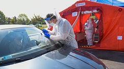 Masowe testy na koronawirusa w Polsce? Nieoczywista odpowiedź specjalistki